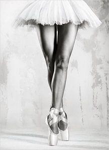 Black and White Ballerina van David Potter