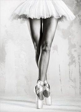 Schwarz und Weiß Ballerina