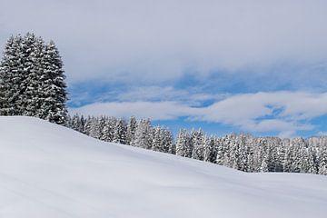 Sneeuw landschap in de bergen, Seiseralm Italië van Judith Cool