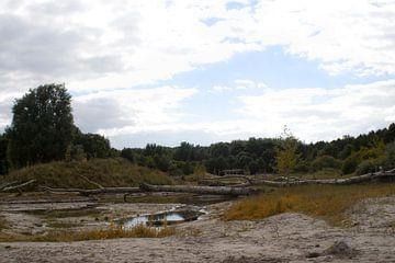 landschap flevoland van
