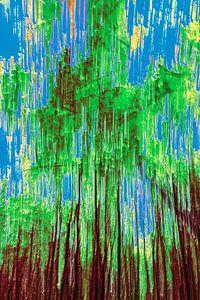 Wald und ein klarer blauer Himmel