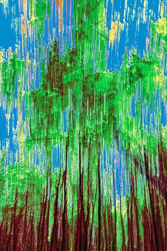 bos en een strak blauwe hemel