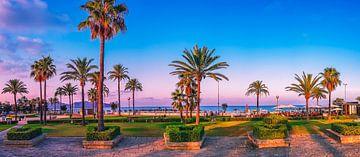 Mallorca met palmbomen en zonsondergang van Mustafa Kurnaz