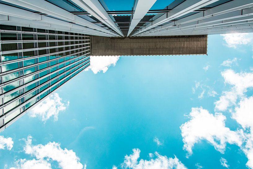 perspectief van Niels Hemmeryckx