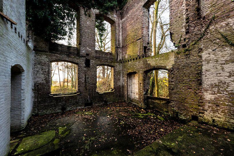 Ruine van een ooit statig kasteel von Brian Morgan