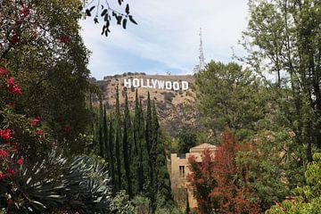 Hollywood van