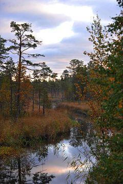 Zweden landschap 3 van Marieke EWA