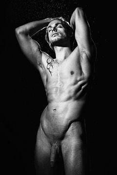 Sehr schöner nackter Mann mit kräftigem, muskulösem Körper unter Wassertropfen #9305 von william langeveld