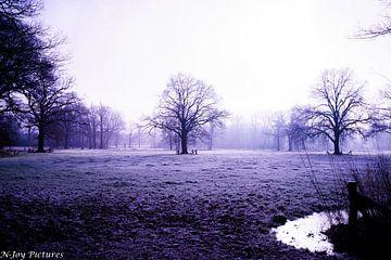 Winter Landschap van N-Joy Pictures