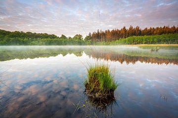 Un étang avec un brouillard et un beau ciel de nuages.