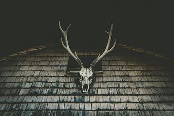 gewei op het houten huis van MindScape Photography