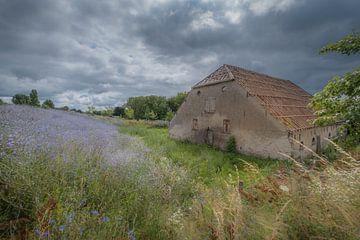 Alter Bauernhof am Deich von Moetwil en van Dijk - Fotografie