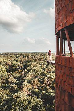 Wachturm Bosbergtoren in Appelscha, Friesland von Expeditie Aardbol