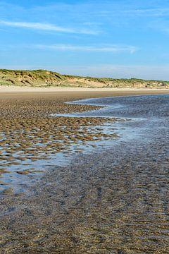 Strand en duinrand van Wouter van Woensel