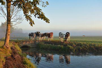 Ein schöner Herbstmorgen in Schipluiden von Charlene van Koesveld