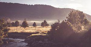 Ochtend zon over het landschap