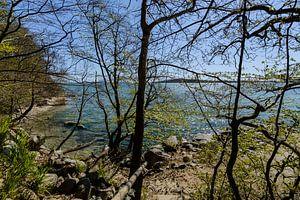 Sur la rive du Goor, sur l'île de Vilm, à Lauterbach sur Rügen