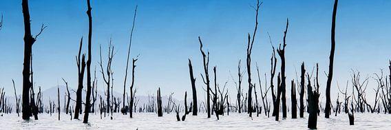 Verdronken land van Anita Loos