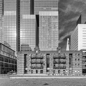 Otto Reuchlinweg - Rotterdam van Tony Buijse