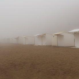 Mistig strand van Shadia Bellafkih