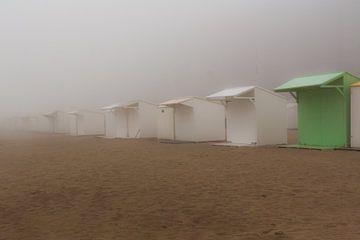Misty beach sur Shadia Bellafkih