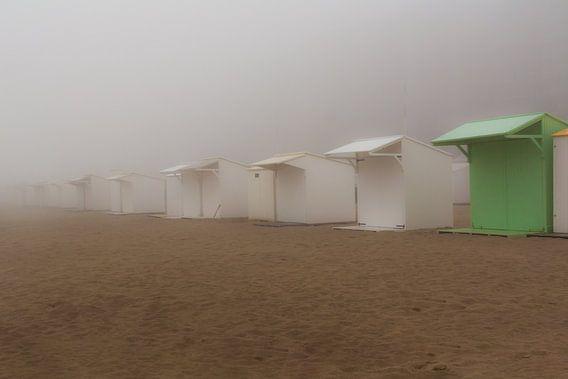 Mistig strand