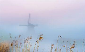 Twiske-Mühle im Morgennebel, Niederlande von Rietje Bulthuis