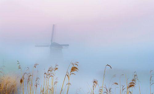 Twiske molen in de ochtendnevel, Nederland