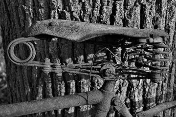 fietszadel van José Batterink