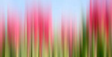 Tulpen Tinktur von Wil van der Velde/ Digital Art