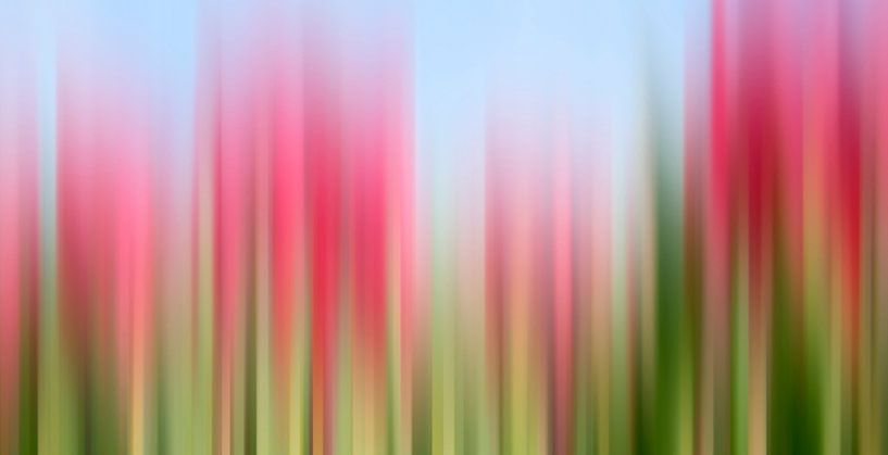 Tulpen tinctuur van Wil van der Velde/ Digital Art