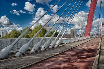 Rotterdam,willemsbrug van Eisseec Design