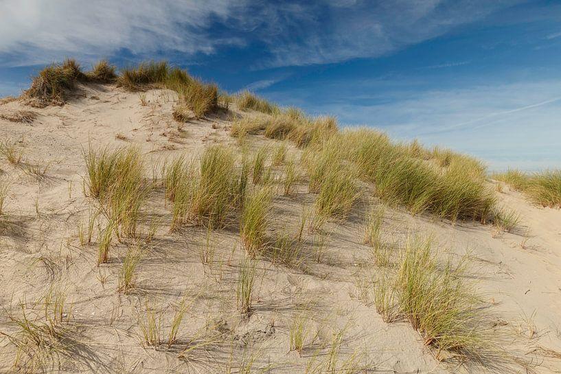 Nederlandse duinen van Menno Schaefer
