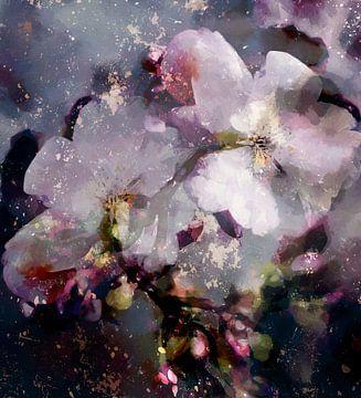 Frühlingsabend von Kay Weber
