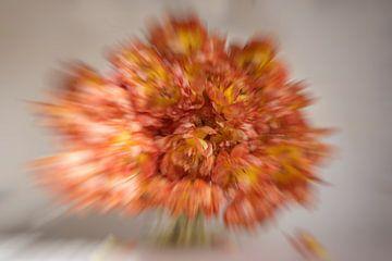 Explosion of Tulips van Roland de Zeeuw fotografie