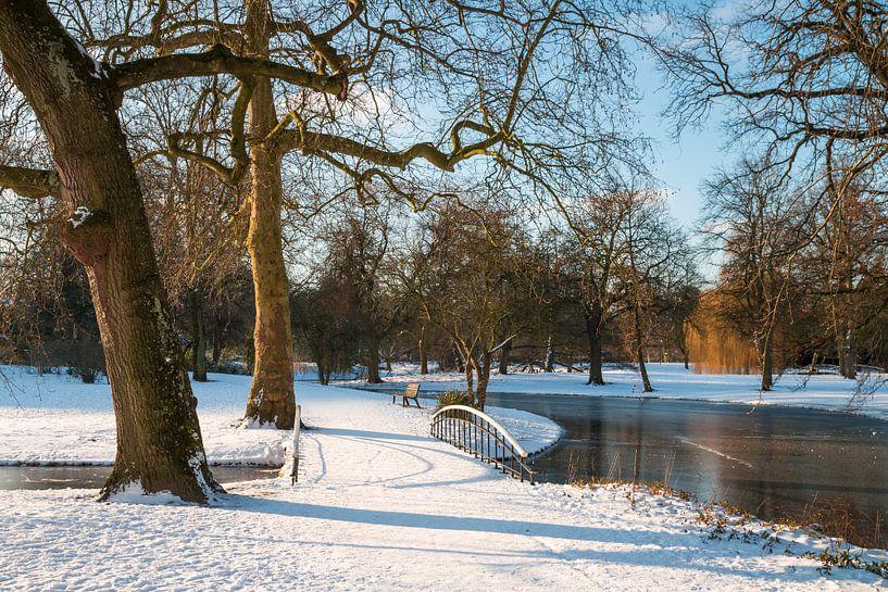 Winter 1 van Nuance Beeld
