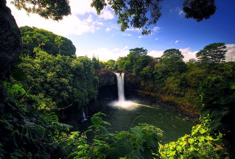 Rainbow Fall's  Hawaii van Leo Roest