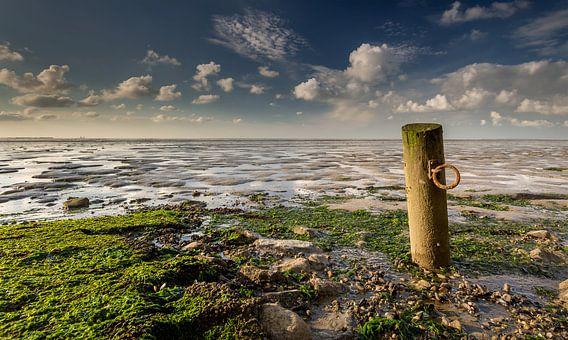 Paaltje bij eb aan de waddenkust vlakbij Wierum van Martijn van Dellen