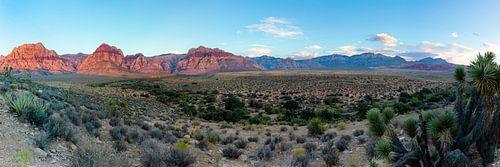 Red Rock Canyon panorama Las Vegas van Remco Bosshard