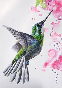 Hummingbird - Kunstdruck einer speziellen Vogelillustration von Angela Peters