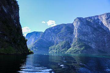 Fjord in noorwegen van Iris van der Veen