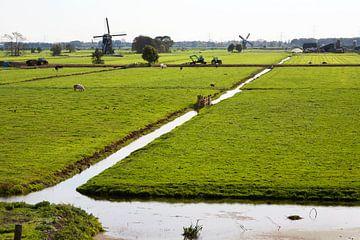 Typisch Hollands polderlandschap met molens op de achtergrond in Streefkerk van Peter de Kievith Fotografie