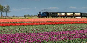 Treintje naar Dromenland ... van Hans Brinkel