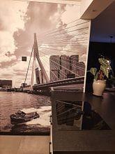 Klantfoto: Watertaxi bij de Erasmusbrug in Rotterdam van Michèle Huge, als behang