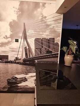Klantfoto: Watertaxi bij de Erasmusbrug in Rotterdam van Michèle Huge