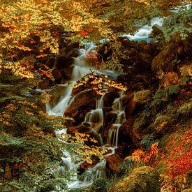 Hidden Waterfall II van Lars van de Goor