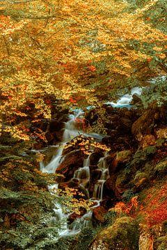 Versteckter Wasserfall II
