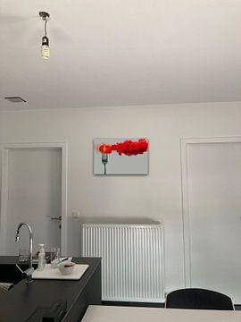 Klantfoto: Gedesintegreerd tomaat, Dina Belenko van 1x