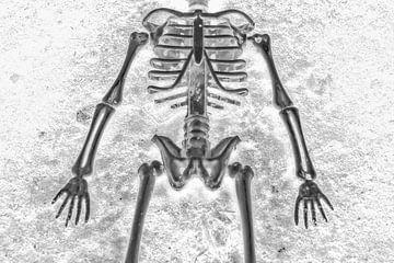 Skelett von Hennie Zeij