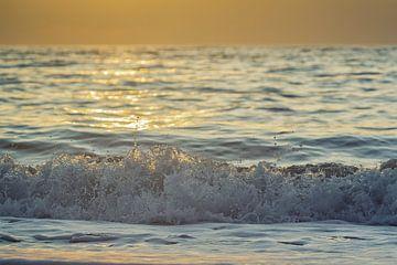 Sommer-Welle von Beate Zoellner